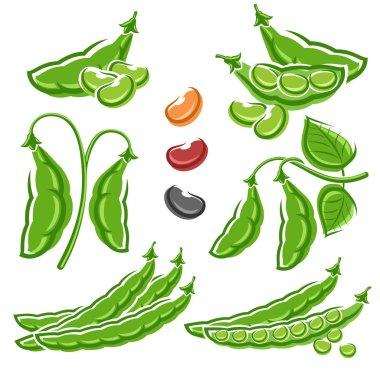 Beans set.