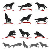 Photo Wolf set. Vector