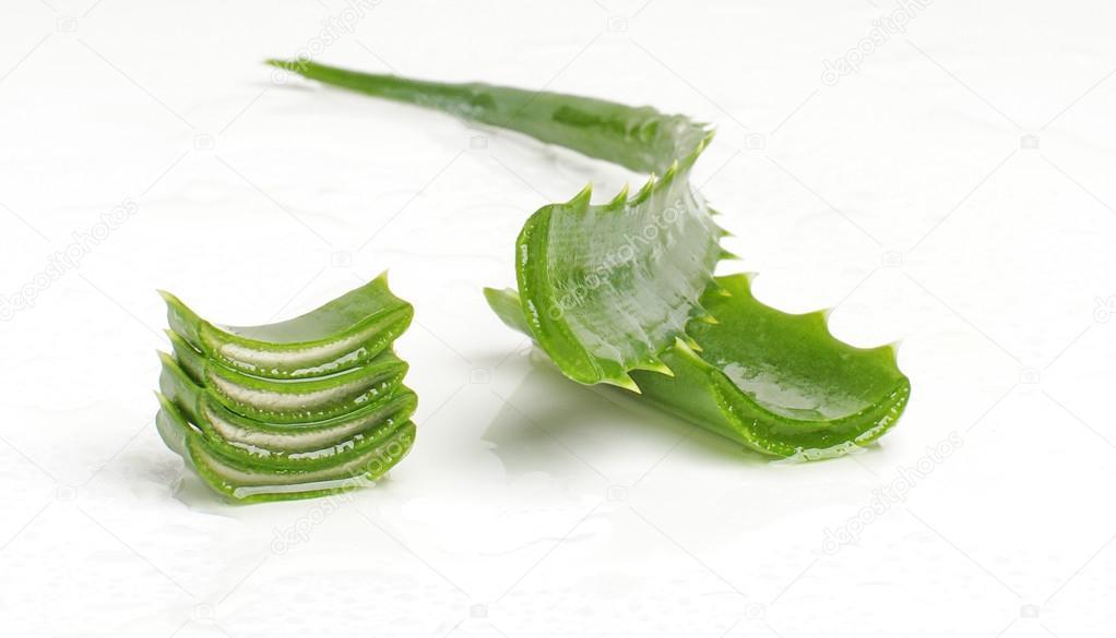 Aloe vera isolated
