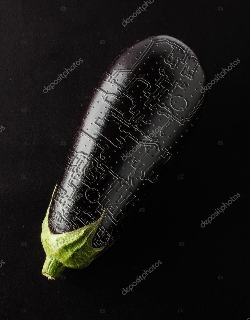 Eggplant with printed circuit board in the cortex