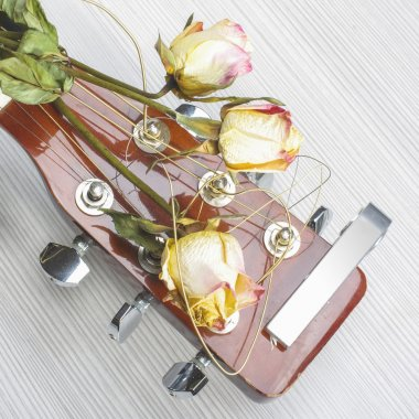 Three wilted roses on acoustic guitar CD cover
