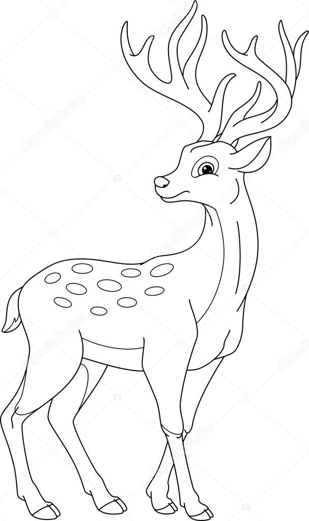 Deer Coloring Page — Stock Vector © Malyaka #120484570