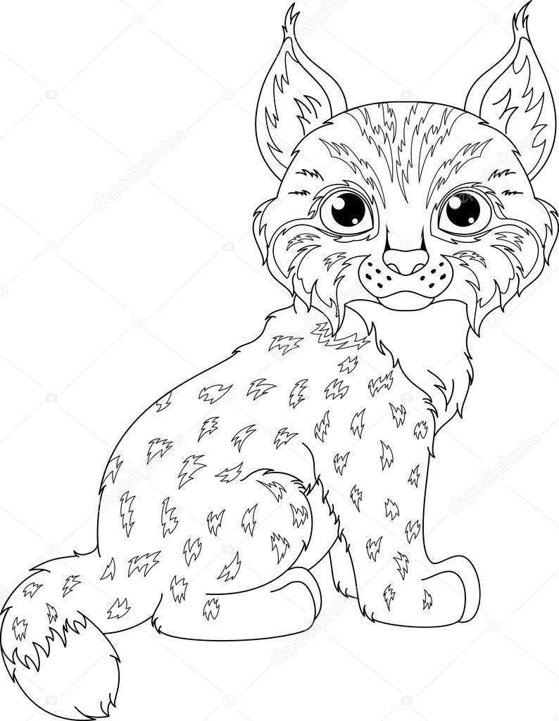 Coloriage de Lynx — Image vectorielle Malyaka © #94071216