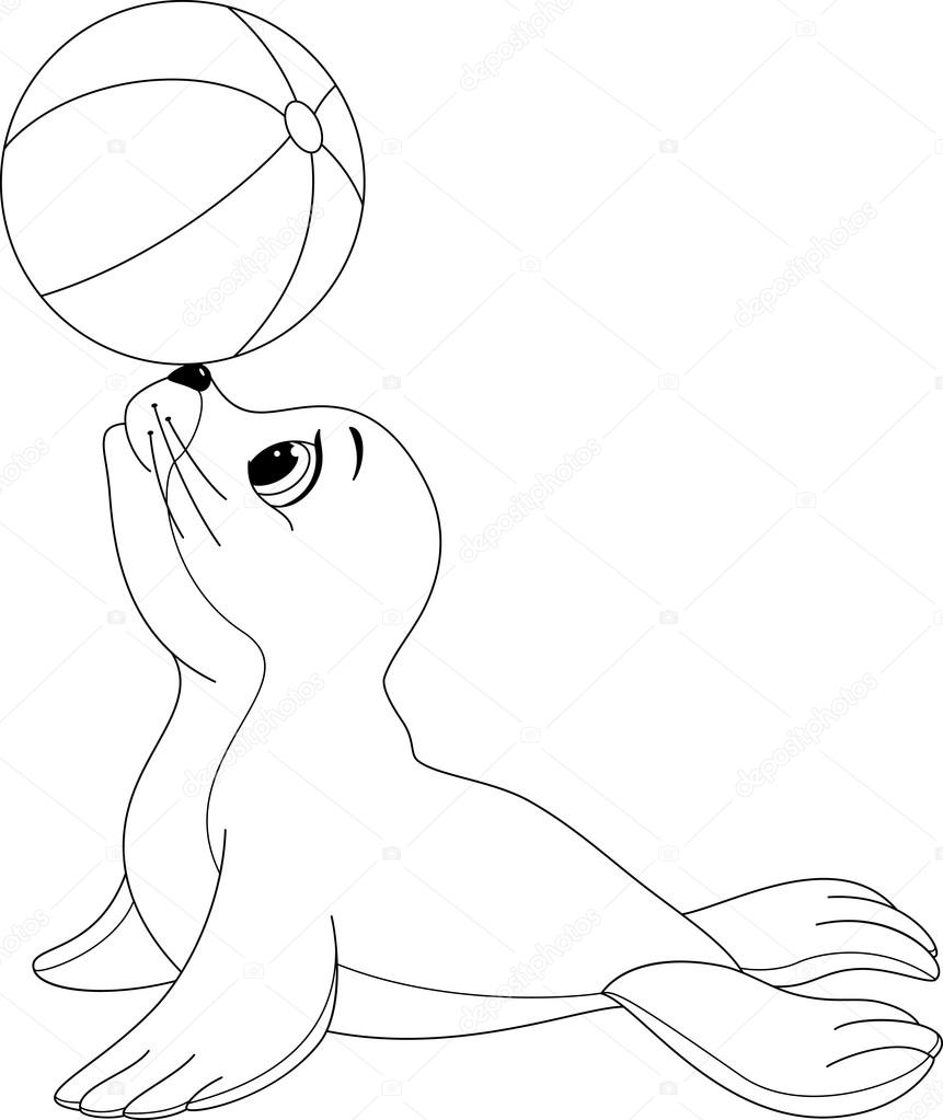 seal coloring - Selo.l-ink.co