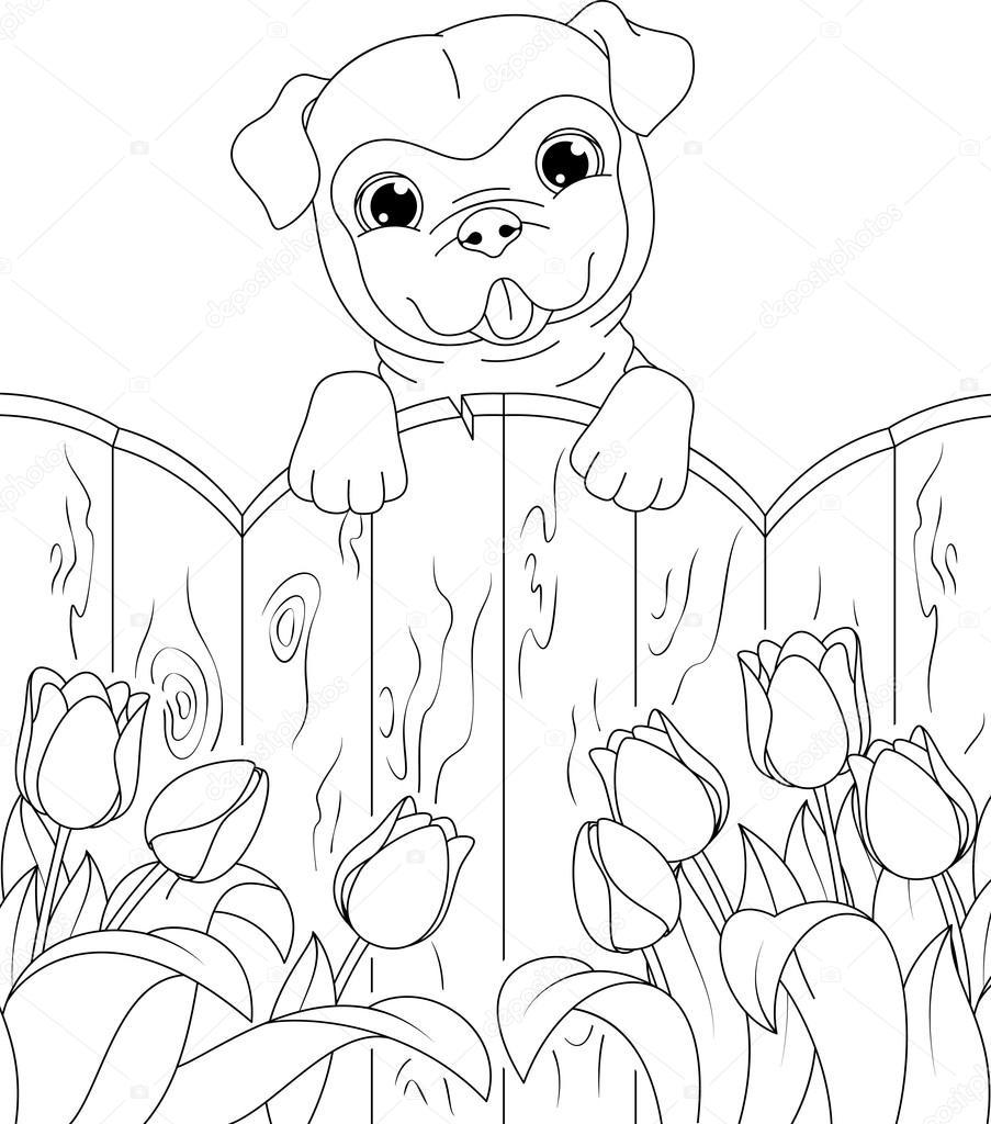 kleurplaat hond stockvector 169 malyaka 99939762
