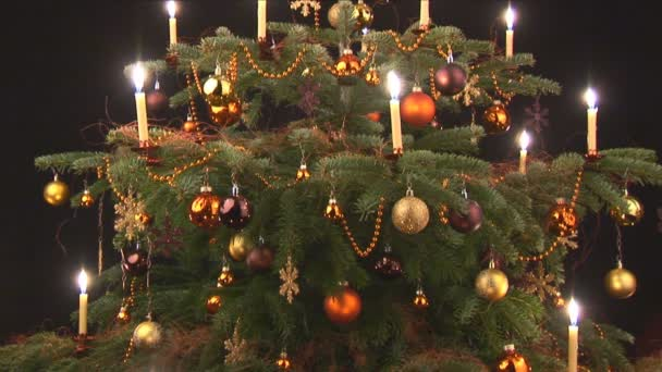 Karácsonyfa, fekete