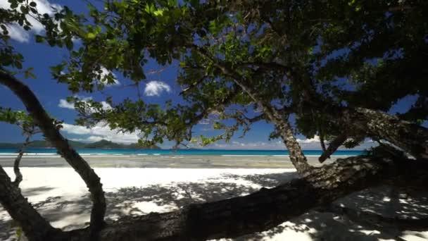 Homokos strand és a tenger