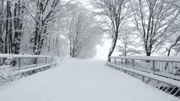 zemědělské most pokryté sněhem