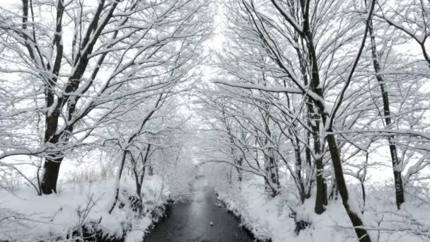 klidné zimní ráno na řece se sněhem pokryté krajiny
