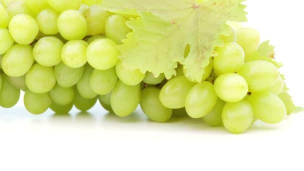 Friss szőlőből készült fehér
