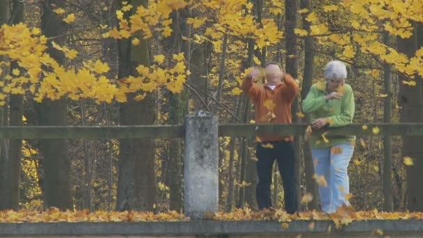 starší pár v parku