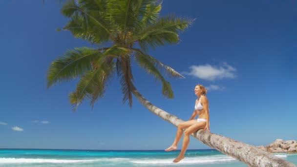 nő a palmtree pihentető
