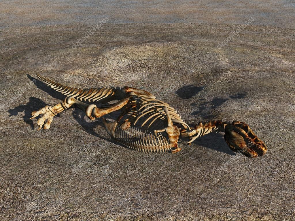Dinosaurio esqueleto medio enterrado — Fotos de Stock © estebande ...