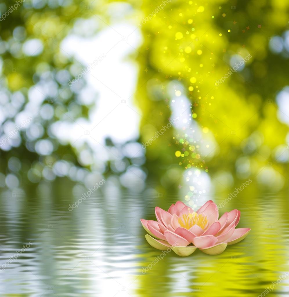 Immagine Di Un Fiore Di Loto Sullacqua Su Sfondo Verde Foto Stock