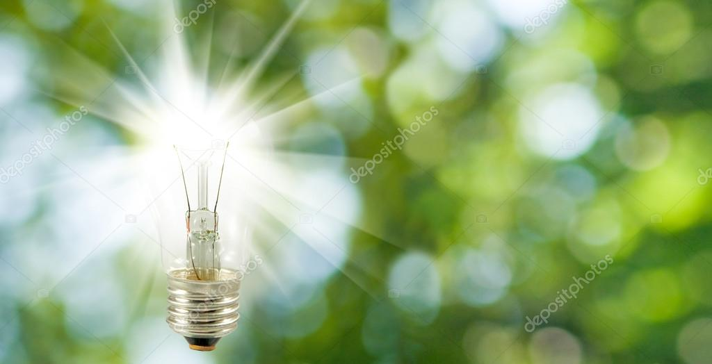 image of included lamp on a green background
