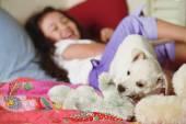 Fotografie junges Mädchen auf dem Bett mit Welpen