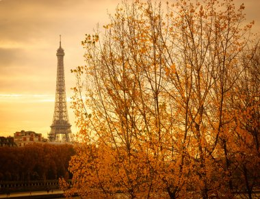 Eiffel tower and trees at sunset.