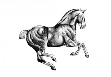 Horse drawing sketch art