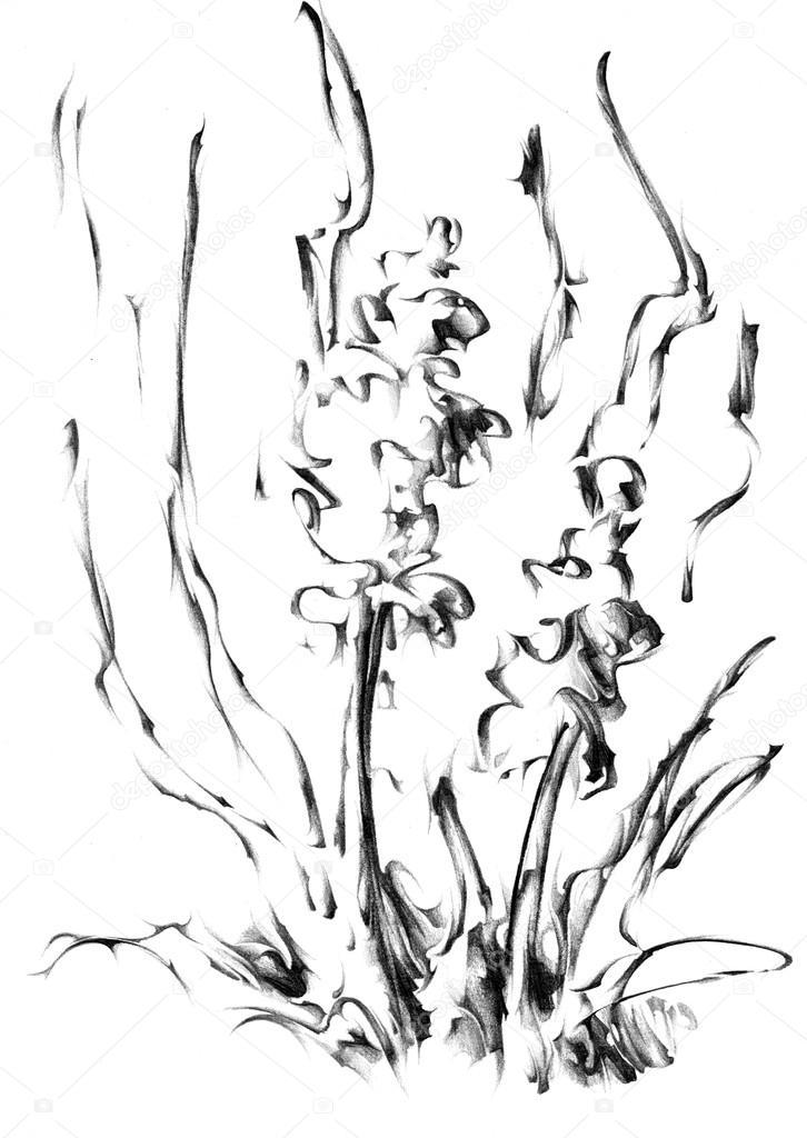 Flower Drawing Sketch Art Stock Photo C Maxtor7777 71316331