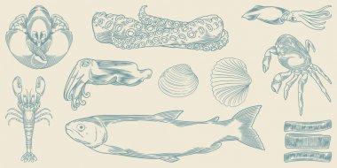 Set of hand drawn sea animal. Cool hand drawn seafood set isolated on white background.