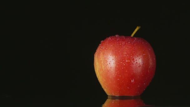 červené jablko na černém pozadí