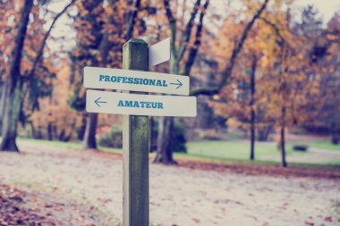 Rustic wooden sign in an autumn park with the words Professional