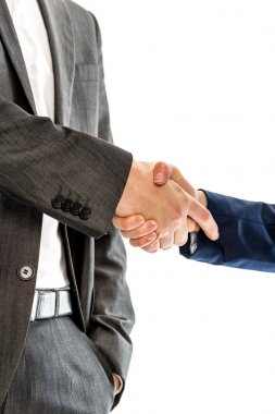 Closeup of male and female business partners shaking hands
