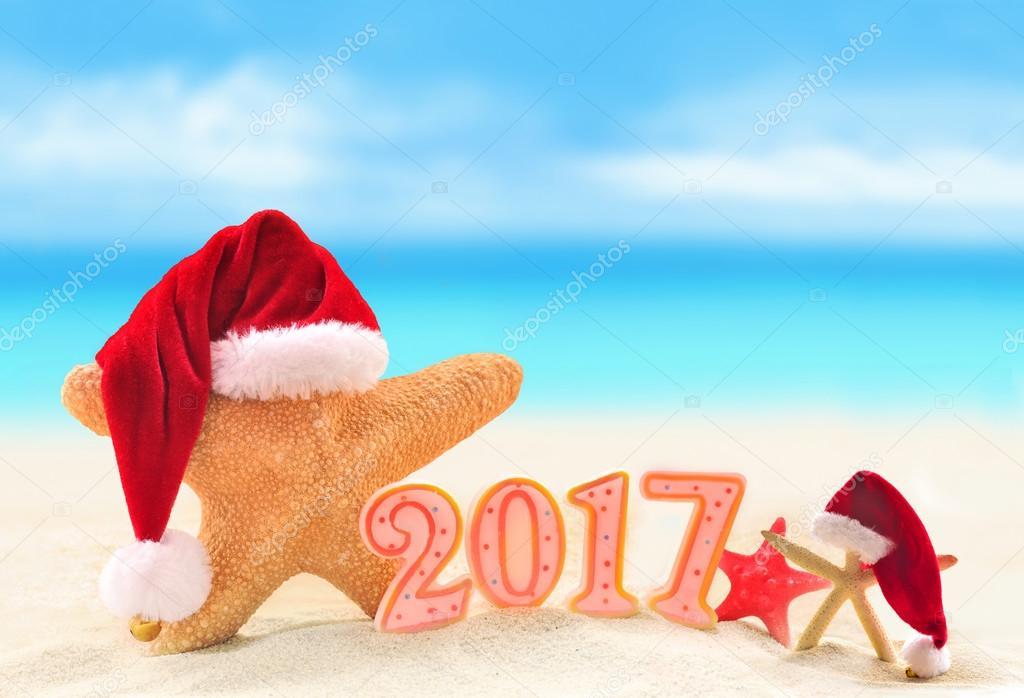 happy new year starfish in santa hat on summer beach stock photo
