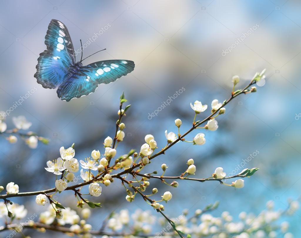Baixar Imagens Bonitas: Flores E Borboletas Lindas