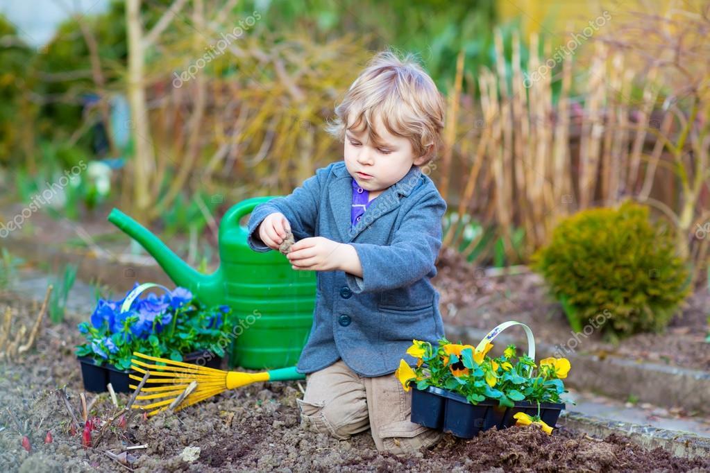 pequeño jardín y plantar flores en jardín — Foto de stock ...