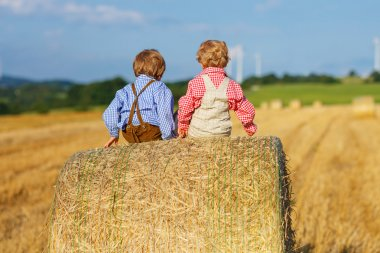 Two little sibling boys and friends sitting on hay stack