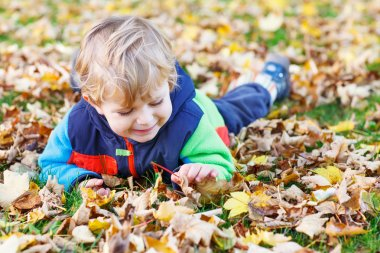 Cute little toddler child having fun with autumn foliage