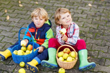 Two adorable little twin kids eating apples in home's garden, ou