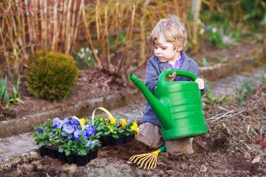 Little boy gardening and planting flowers in garden