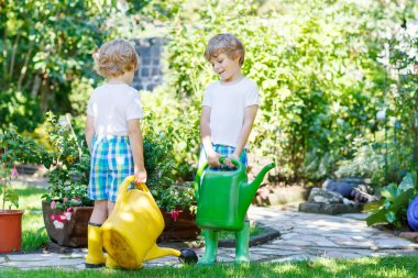 Two little kid boys watering plants in greenhouse in summer