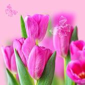 Collage con i tulipani rosa
