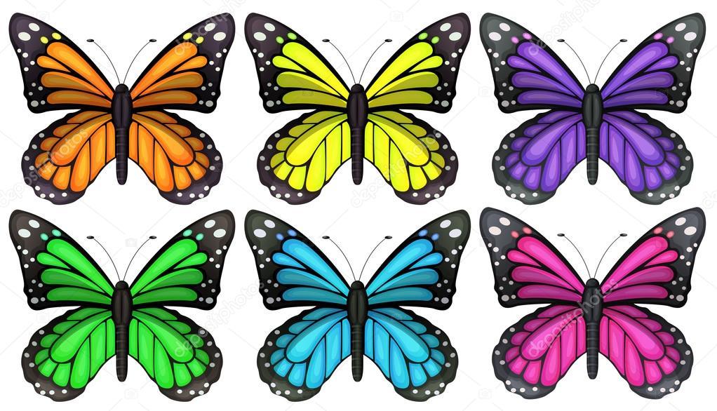 Farfalle colorate vettoriali stock blueringmedia 53346161 for Immagini di pareti colorate