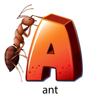 A letter A for ant
