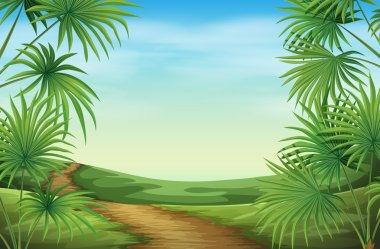 """Картина, постер, плакат, фотообои """"красивый пейзаж с пальмами """", артикул 55127293"""
