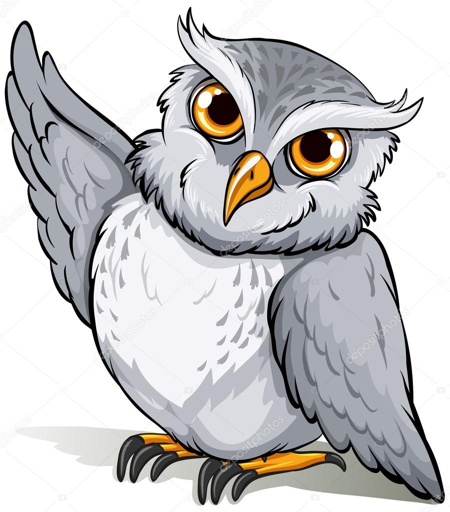 A wise owl idiom