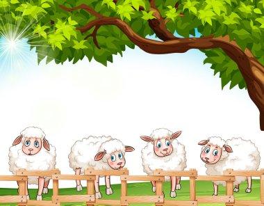 """Картина, постер, плакат, фотообои """"четыре овцы """", артикул 66115973"""