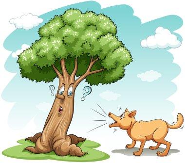 Dog barking the tree