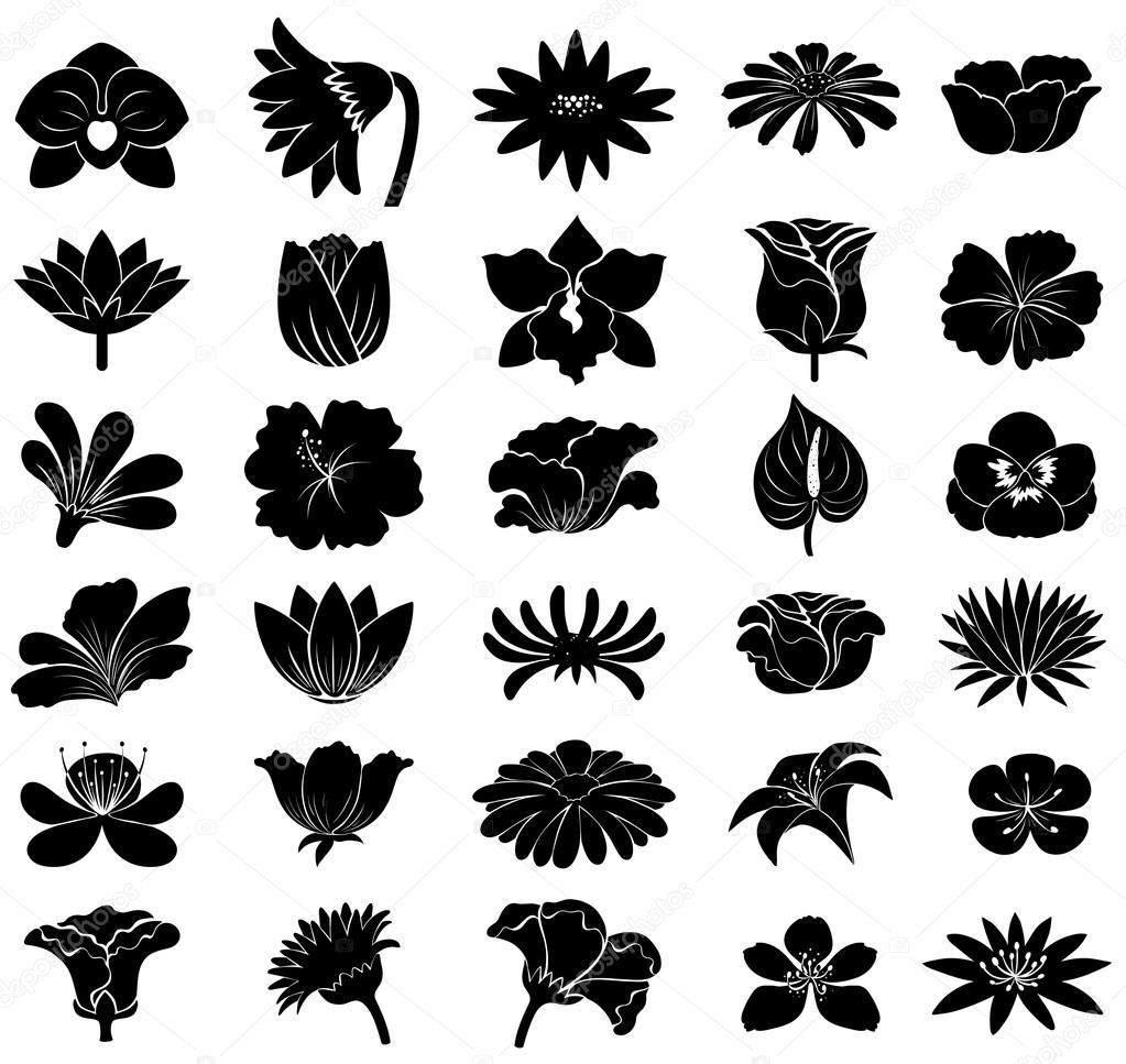 Plantillas De Flores Negras Archivo Imágenes Vectoriales