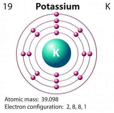 Diagram representation of the element potassium