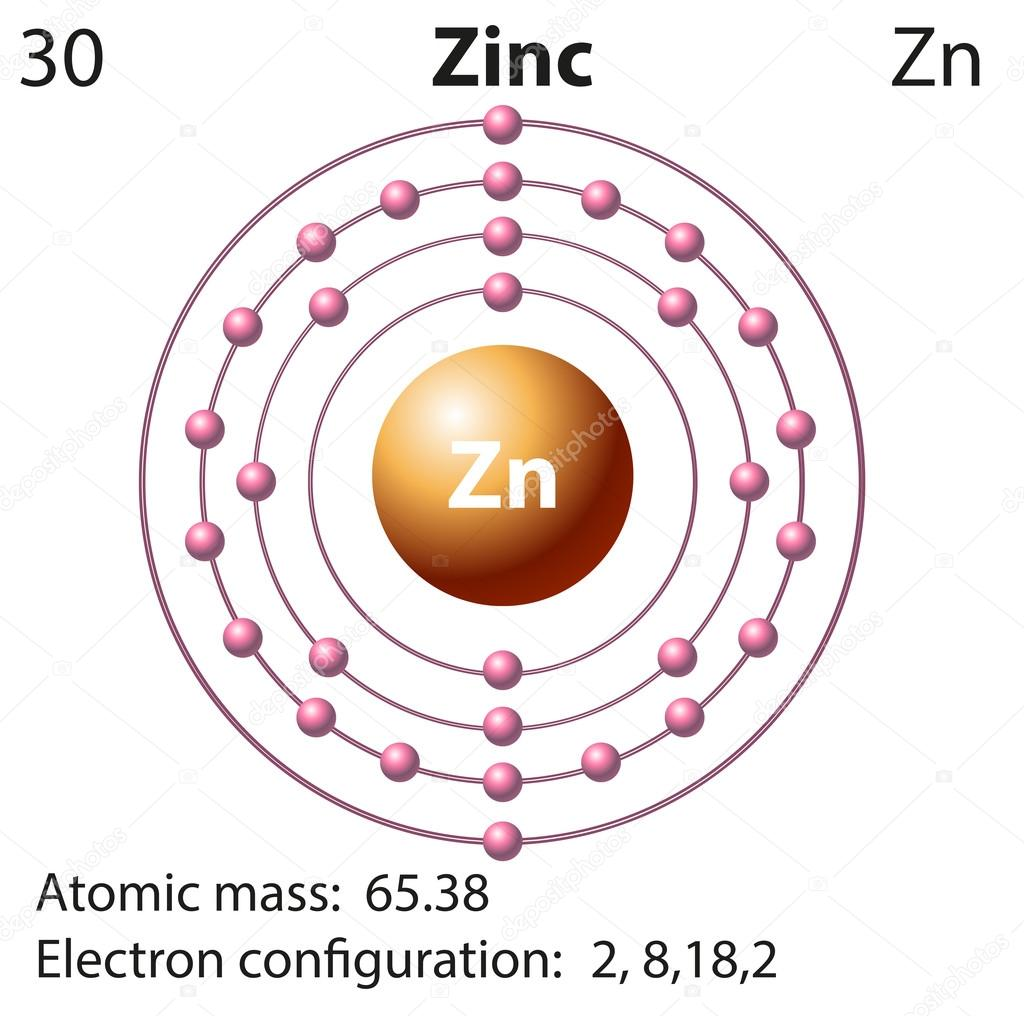 Symbol and electron diagram for zinc stock vector blueringmedia symbol and electron diagram for zinc stock vector ccuart Images