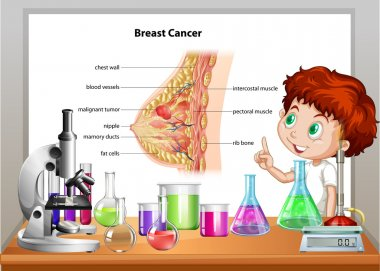 Boy in science class explaining breast cancer