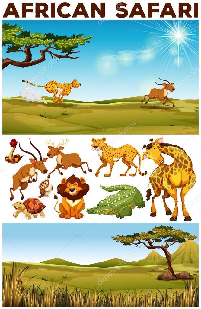 Top Thema van de Safari met wilde dieren in het veld — Stockvector @FR46