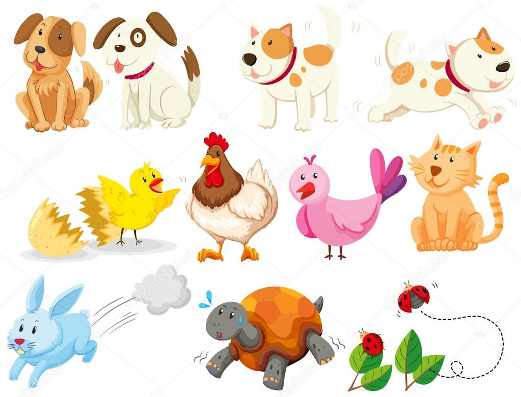 diferentes tipos de animales dom u00e9sticos vector de stock safari animal clip art png safari animal clip art border