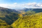 Black River Gorges National Park na ostrově Mauricius
