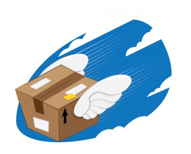Bird Wings Package express delivery
